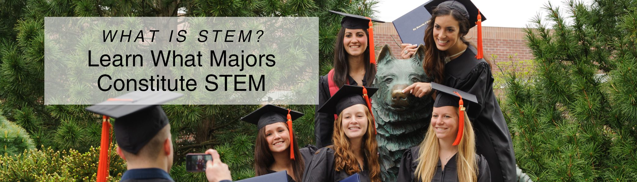 Possible stem majors